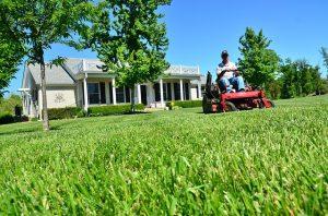 Koszenie trawy na osiedlach mieszkaniowych